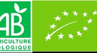 loriginel-l-originel-restaurant-creole-paris-bio-sans-gluten-vegan-ital-naturel-100-lokal-certifie-AB-bio